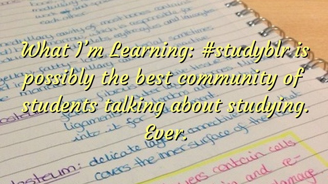 What I'm Learning: #studyblr is possibly the best community of students talking about studying. Ever.