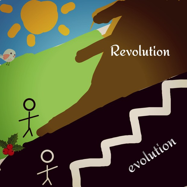 Success through evolution rather than revolution