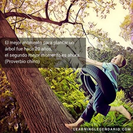 El mejor momento para plantar un árbol fue hace 20 años, el segundo mejor momento es ahora. Proverbio chino.