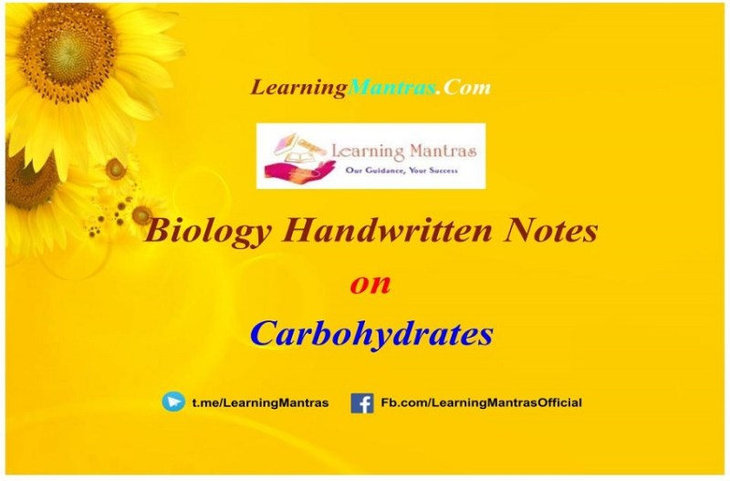 Carbohydrates Handwritten Notes PDF