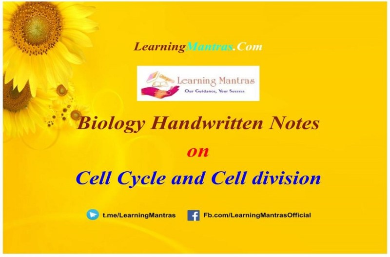 Cell Cycle and Cell division Handwritten Notes PDF