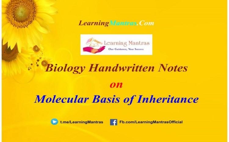 Molecular Basis of Inheritance Notes PDF for Class 12, NEET, AIIMS and Medical Exams