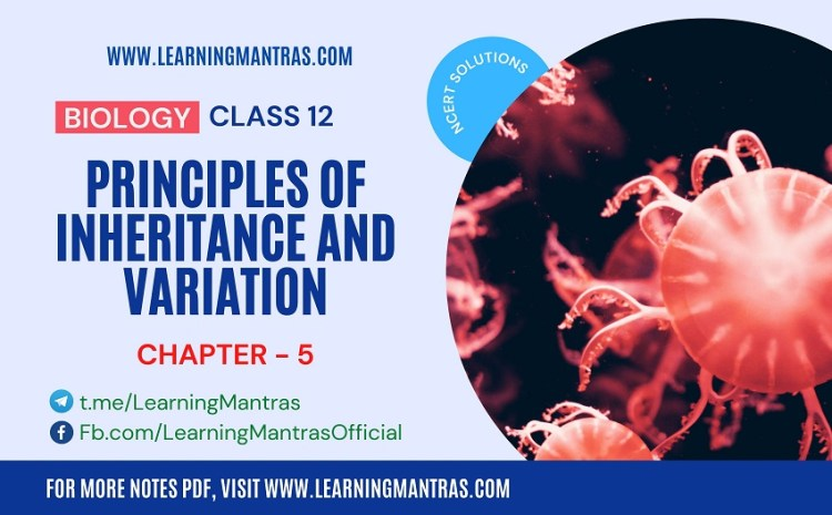 NCERT Solutions for Principles of Inheritance and Variation – Biology Class 12 Chapter 5 – Download PDF