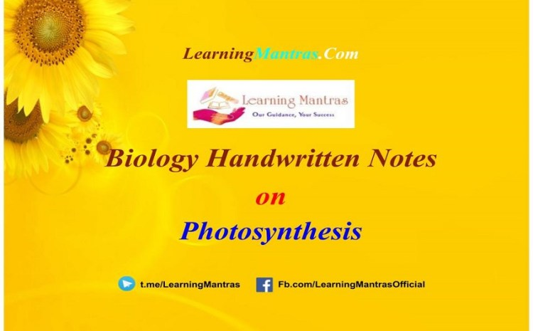 Photosynthesis Handwritten Notes PDF for Class 12, NEET, AIIMS and Medical Exams