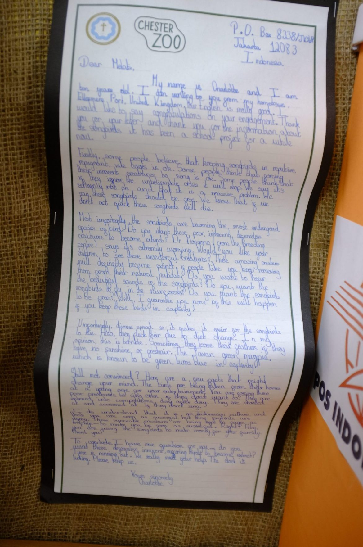 Letter writing from invested children