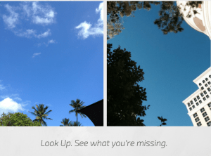 Look up1