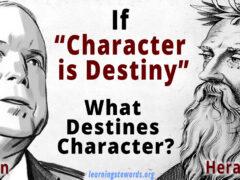 characterdestiny