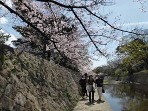 Sakura 2016 in Nishinomiya 7