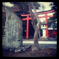 Study Japanese in Japan