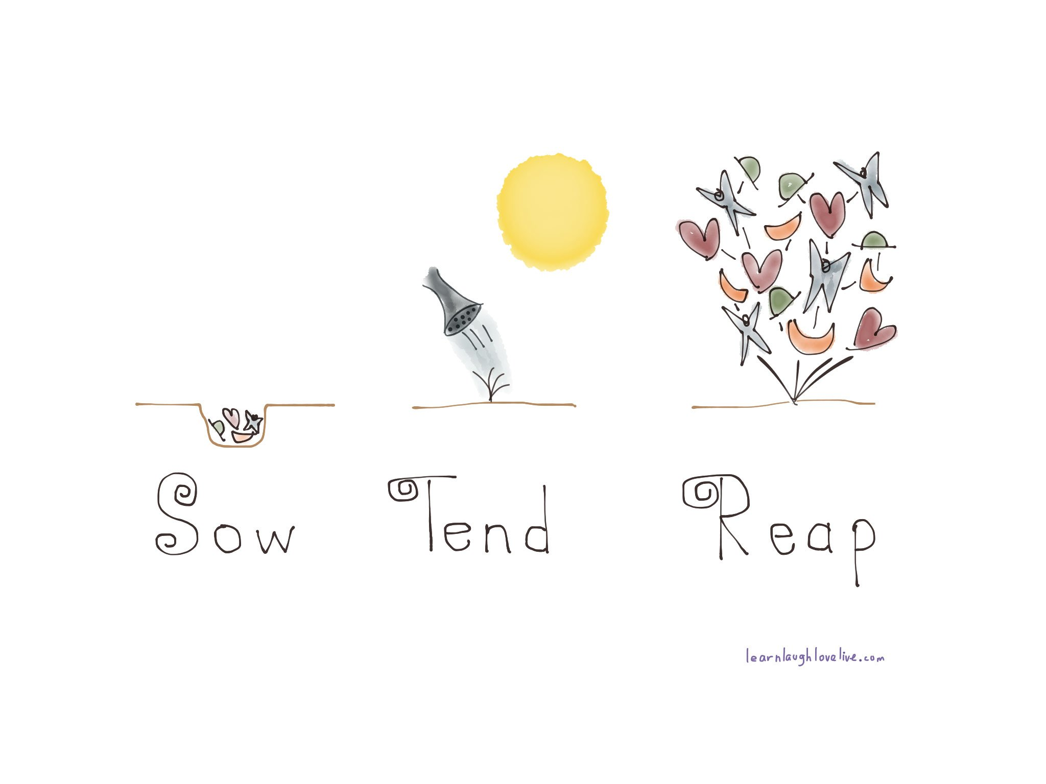 Drawing - Sklar - Sow Tend Reap - learn laugh love live life LRN LAF LUV LIV LYF