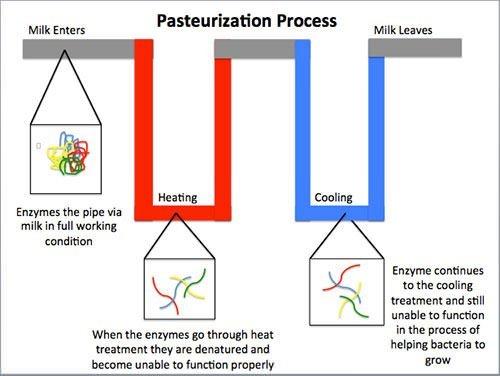 Pasteurization process diagram