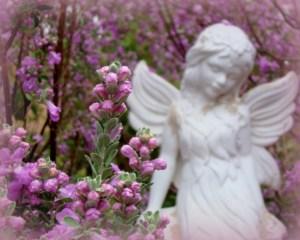 photo of an angel in a garden