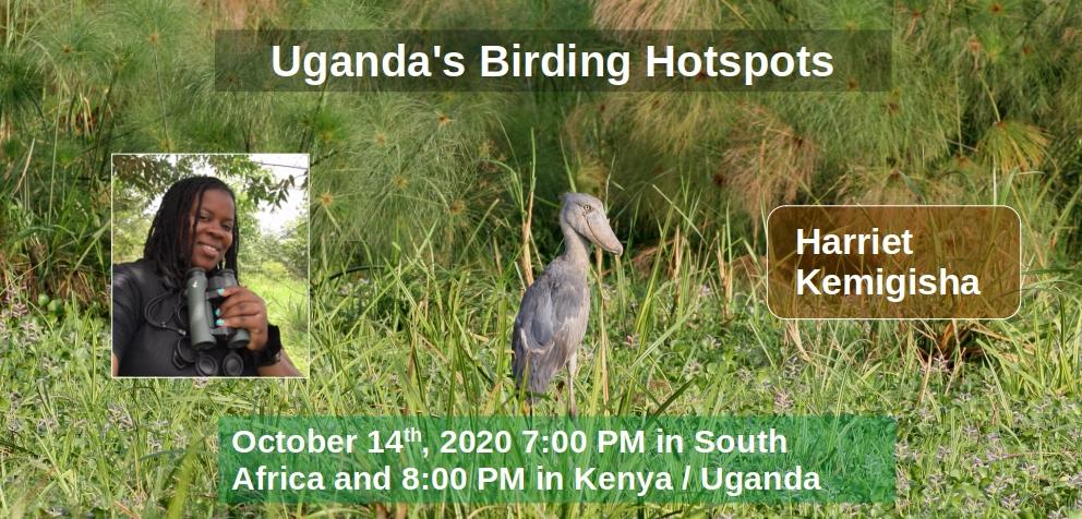 Uganda's Birding Hotspots banner