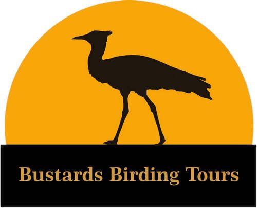 Bustards Birding logo