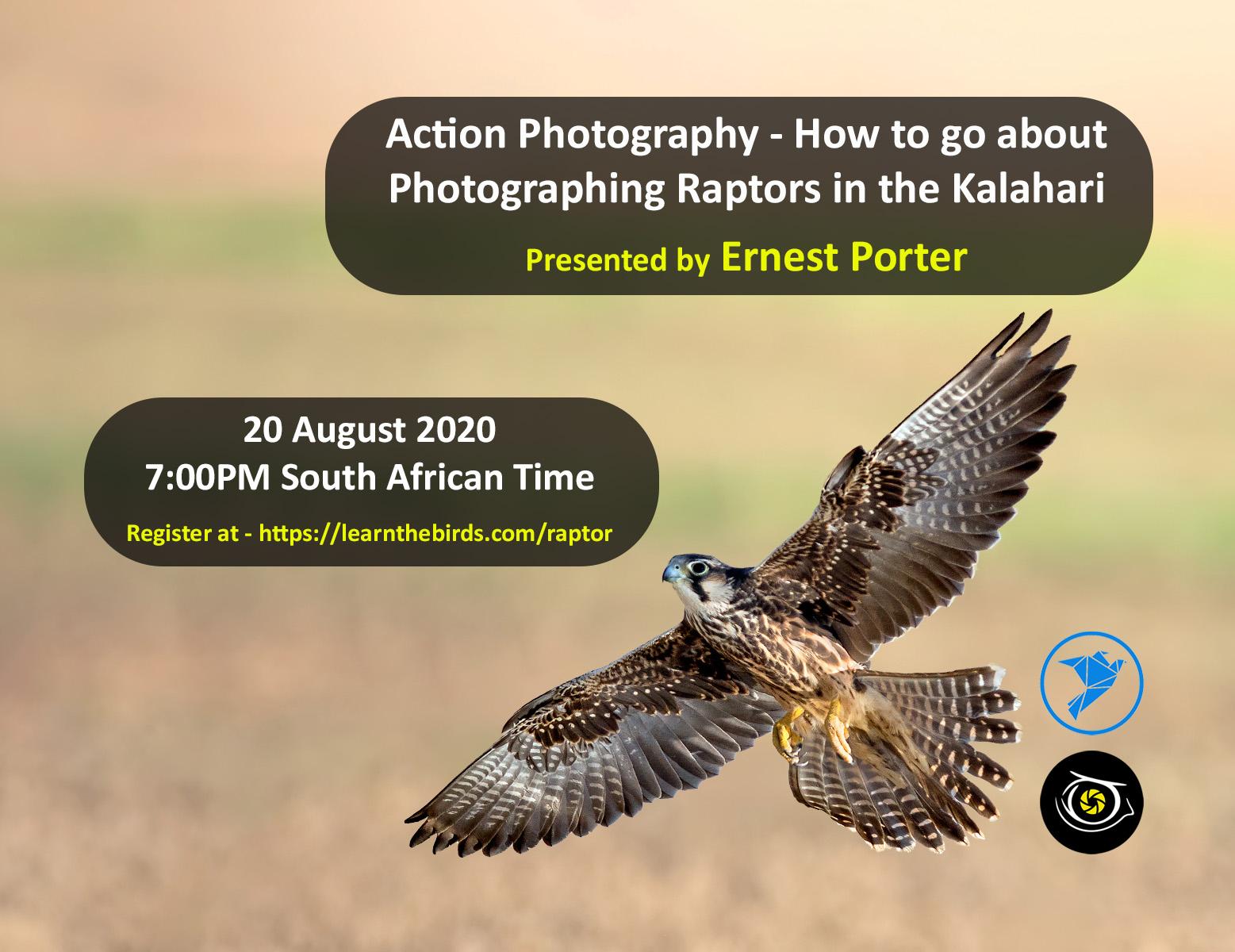 Raptors - Kalahari