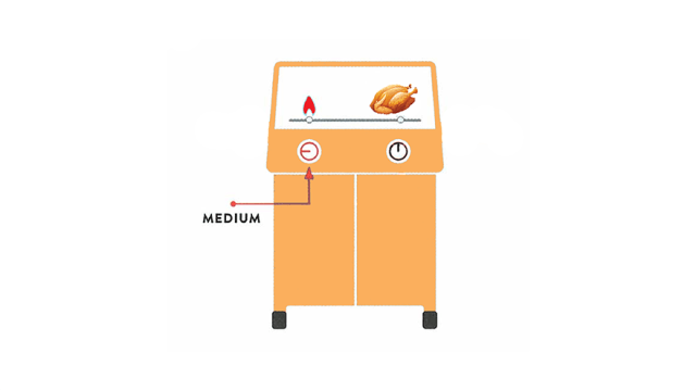 two burner grill with turkey