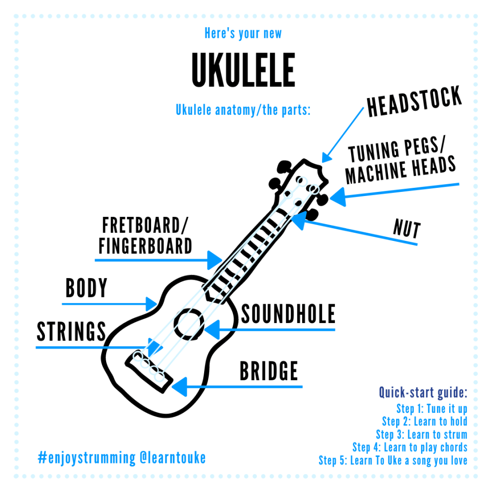 Ukulele Anatomy the parts