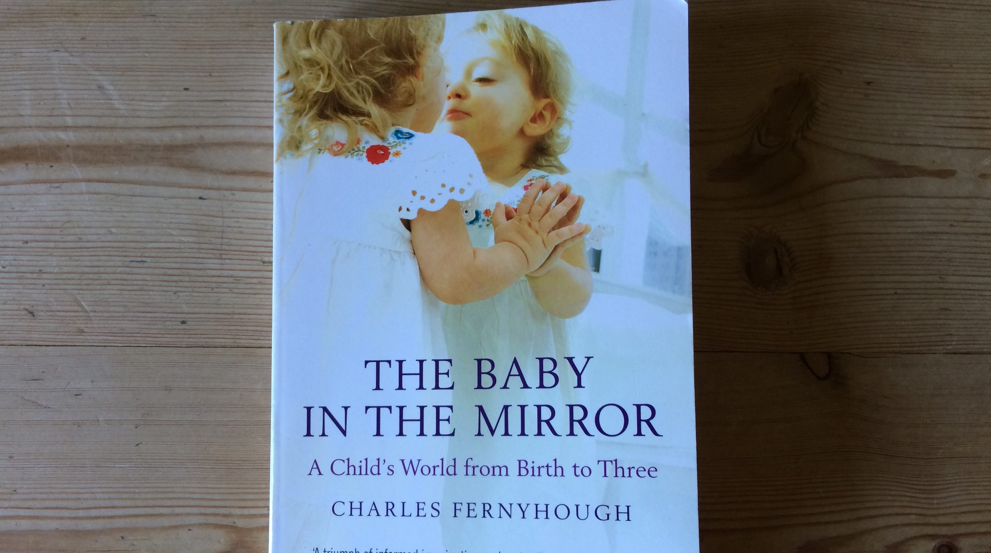 The Baby in the Mirror, by Charles Fernyhough