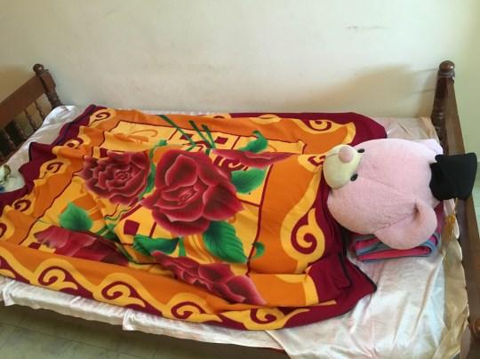 A big Teddy bear was sleeping on the volunteer's bed.