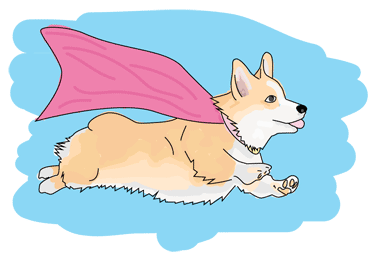 A Corgi with a cape, flying