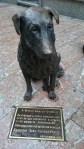 Diese Hundestatue wurde denjenigen Leuten gewidmet, welche sich bemüht haben verwahrlosten bzw. herrenlosen Tieren in der Stadt Oviedo zu helfen und sie zu pflegen.