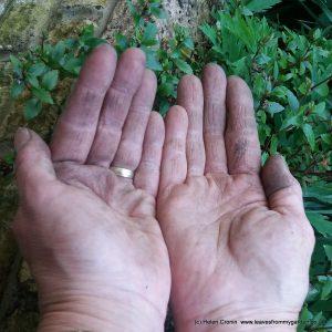 World of colour, garden hands, green thumbs