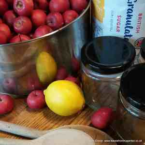 General Notes for making Pickles and Preserves at leavesfrommygarden.co.uk