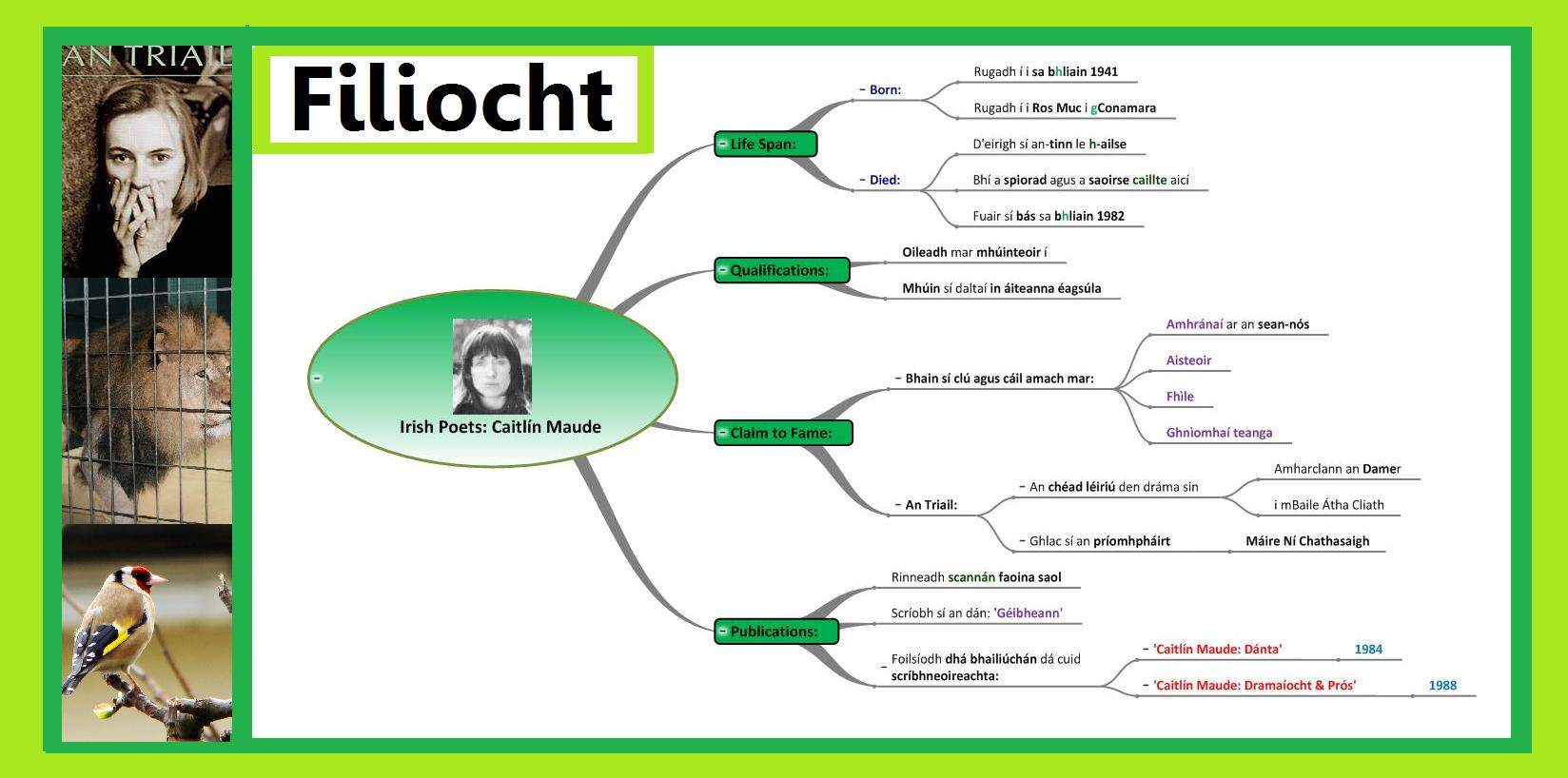 Leaving Cert Irish Mind Maps