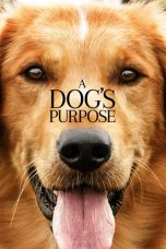 Nonton Movie A Dog's Purpose (2017) Sub Indo