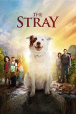 Nonton Movie The Stray (2017) Sub Indo