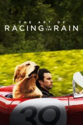 Nonton Online The Art of Racing in the Rain (2019) Sub Indo