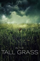 Nonton Online In the Tall Grass (2019) Sub Indo