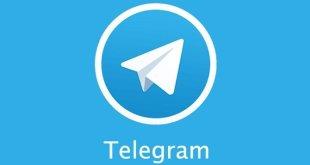 Setiap Hari Telegram Hapus 10 Kanal Radikal di Indonesia