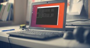Cara Uninstall JDK Di Linux Ubuntu
