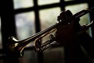 Tom à la trompette