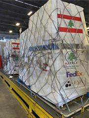 cargo with logos[2]