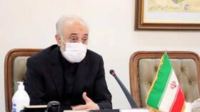 صالحي: العدو أراد من هجوم نطنز وقف تخصيب اليورانيوم