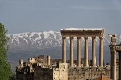 Ruines de Baalbek, Vallée de la Bekaa Liban, la chaîne du Mont Liban enneigée en arrière plan