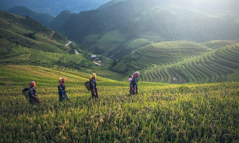 Les incontournables en Thaïlande