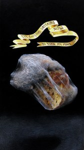 paloma pajaro - fosil pintura - le bastart