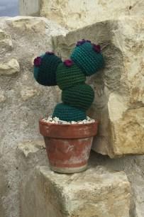 crocheter un cactus