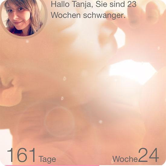 12 von 12 - Januar 2015 - App Schwanger