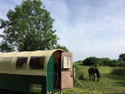 Urlaub im Pferdeplanwagen