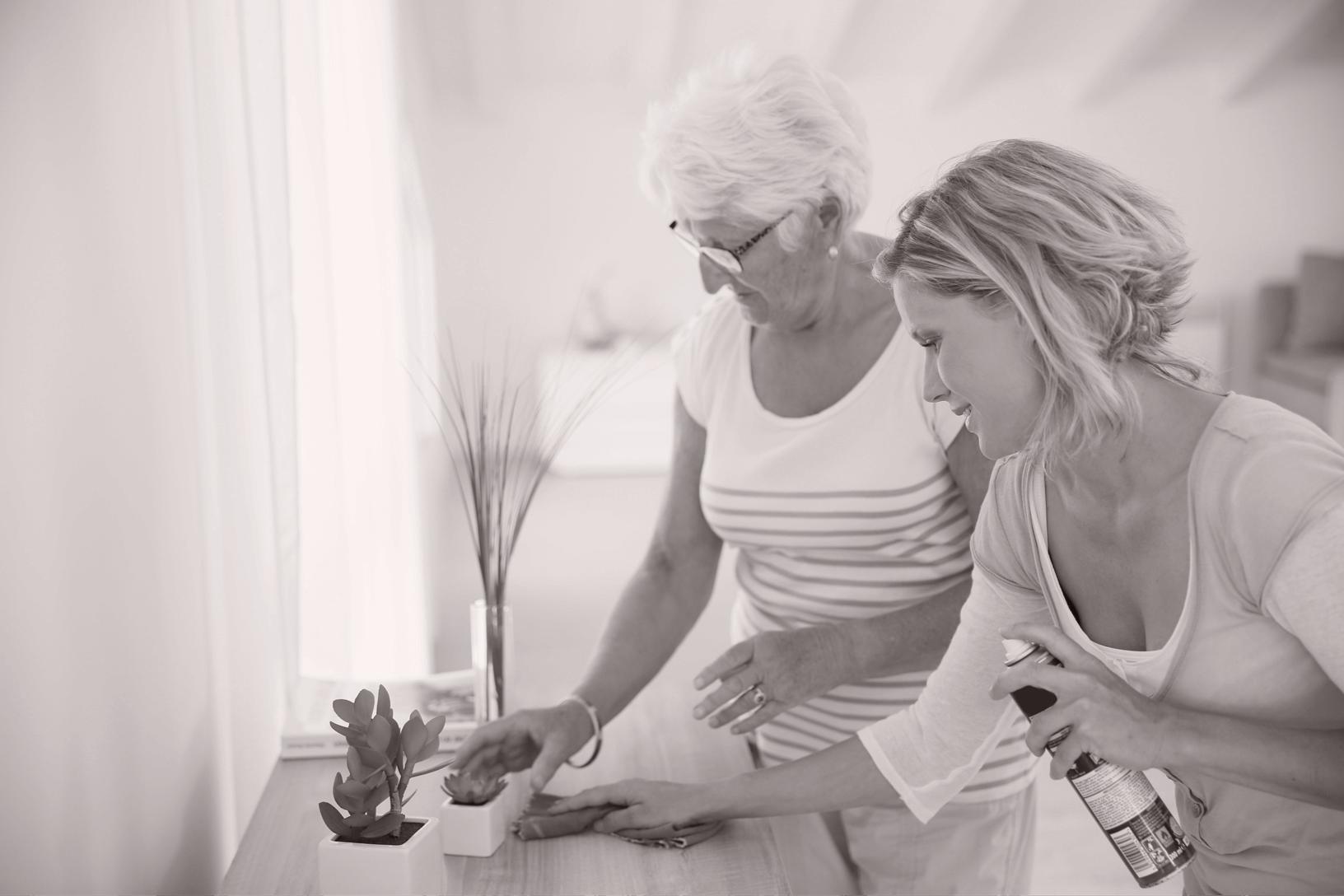 Betreuung und Hauswirtschaft - LEBEN+PFLEGEN daheim