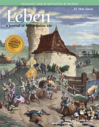 Leben-Vol13-Issue3_Leben-Template.qxd