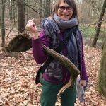 Im Wald und Pilze finden
