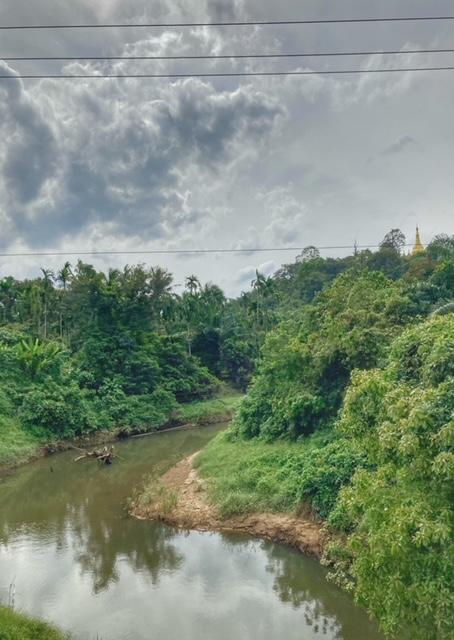 Wilder Fluß während der Fahrradtour Chumphon Ranong