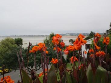 Blumen in Gorey