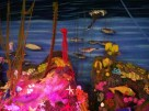 Unterwasserstricklandschaft im Maritime Museum