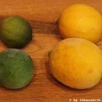 Zitrusfrüchte einfrieren